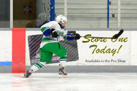 2013 St. Patrick's Day Tournament